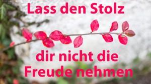 lass-den-stolz